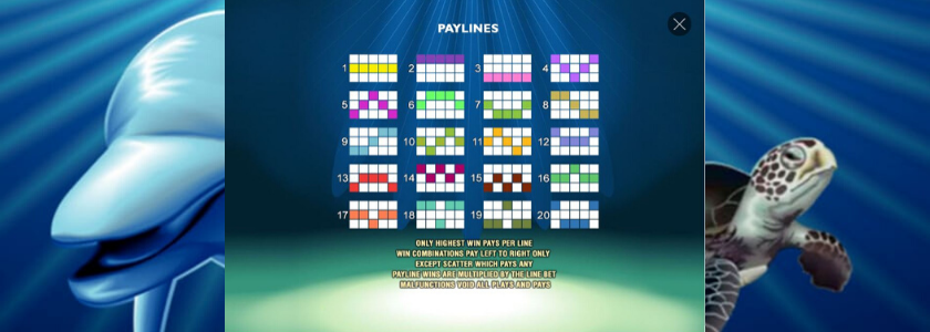 Dolphin Reef - paylines